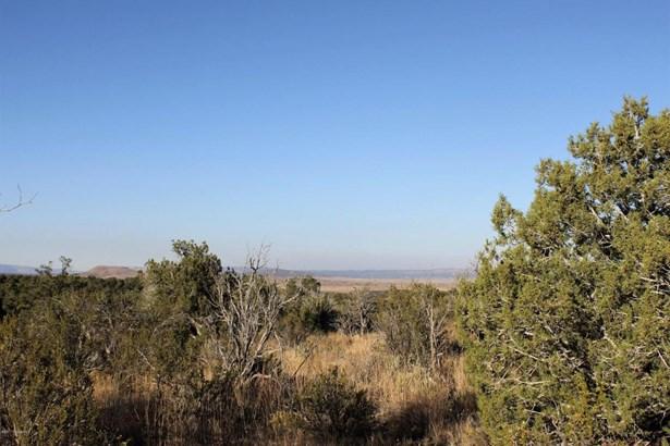 Residential - Seligman, AZ (photo 1)