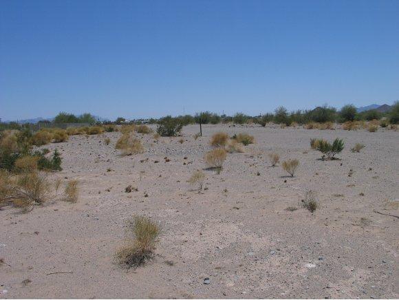Residential - Quartzsite, AZ (photo 1)