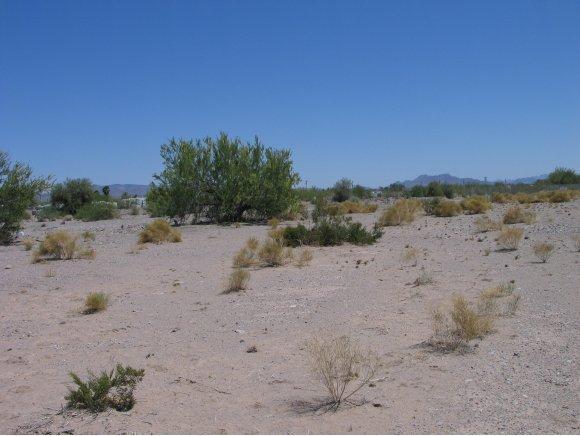 Residential - Quartzsite, AZ (photo 3)