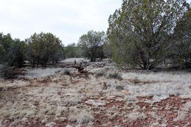 Residential - Ash Fork, AZ (photo 1)