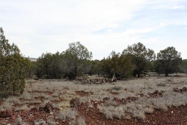 Residential - Ash Fork, AZ (photo 5)