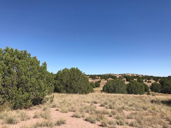 Residential - Chino Valley, AZ (photo 4)
