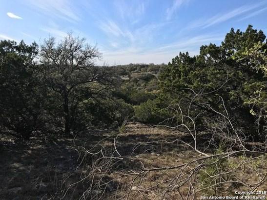 1054 Madrone Rd, Fischer, TX - USA (photo 4)
