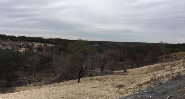 133 Taylor Creek Way, Liberty Hill, TX - USA (photo 3)