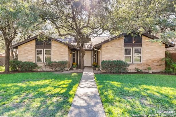 4222 Fig Tree Woods, San Antonio, TX - USA (photo 1)