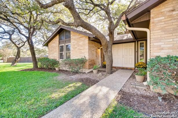 4222 Fig Tree Woods, San Antonio, TX - USA (photo 3)