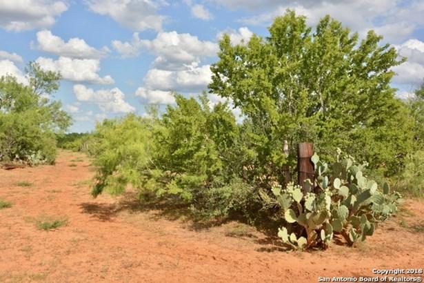 Cr 4715 Patro Garcia Rd, Dilley, TX - USA (photo 4)