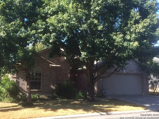 9522 Black Thorn Ln, San Antonio, TX - USA (photo 1)