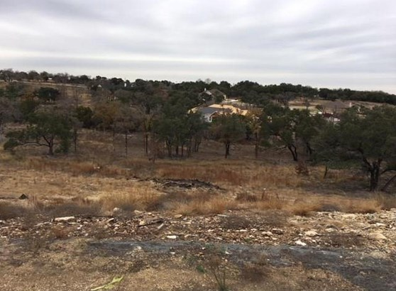 129 Taylor Creek Way, Liberty Hill, TX - USA (photo 1)