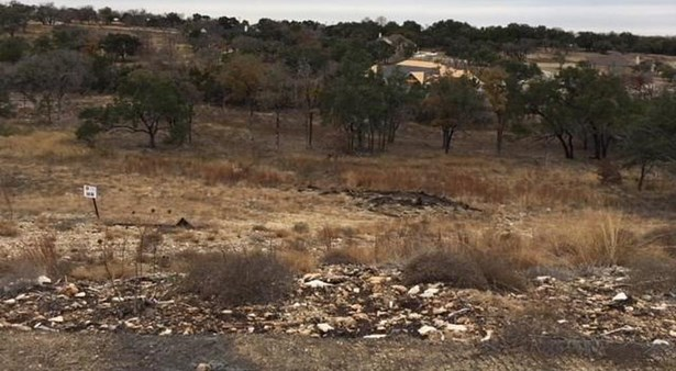129 Taylor Creek Way, Liberty Hill, TX - USA (photo 2)
