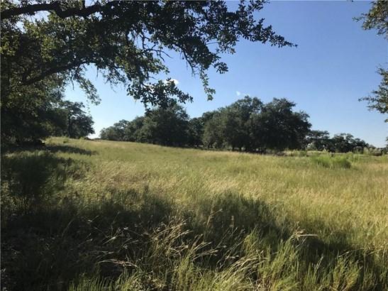 000 Black Buck Ridge, Johnson City, TX - USA (photo 1)