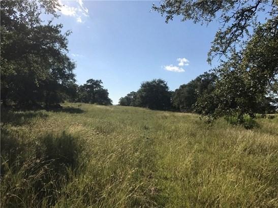 000 Black Buck Ridge, Johnson City, TX - USA (photo 4)