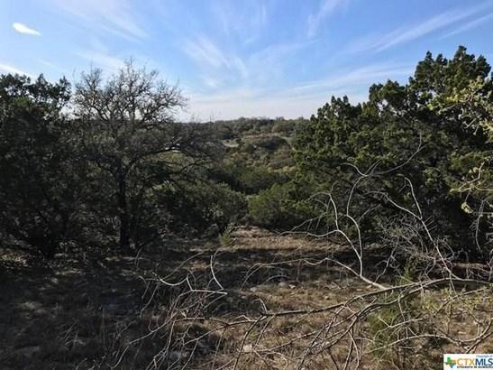1054 Madrone, Fischer, TX - USA (photo 4)