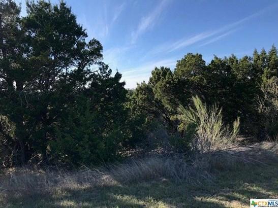 1054 Madrone, Fischer, TX - USA (photo 5)