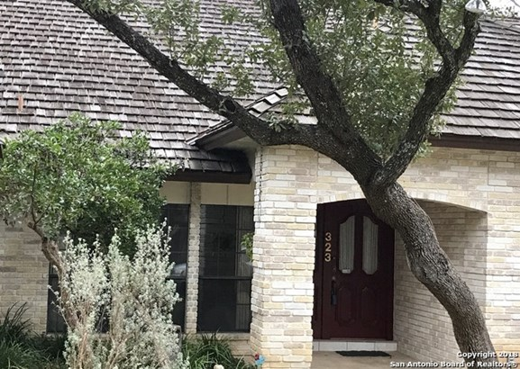 323 Bluffcrest, San Antonio, TX - USA (photo 2)