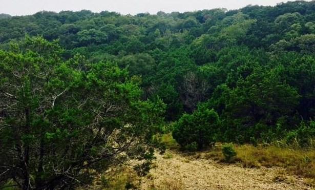 20917 Rawhide Trl, Lago Vista, TX - USA (photo 4)