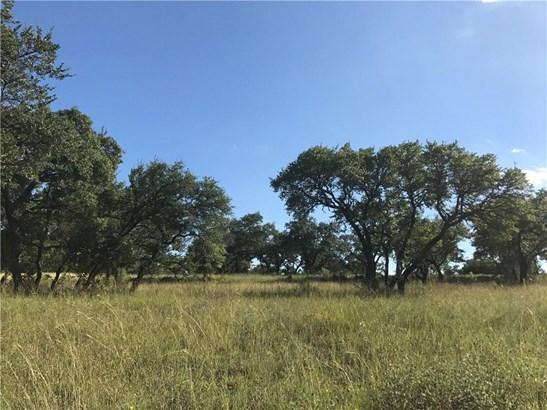 000 Stone Ridge Mountain, Johnson City, TX - USA (photo 2)