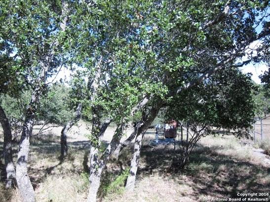 30190 Running Deer Dr, Bulverde, TX - USA (photo 4)