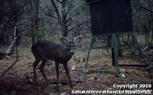 00 Rebecca Creek Rd, Spring Branch, TX - USA (photo 1)