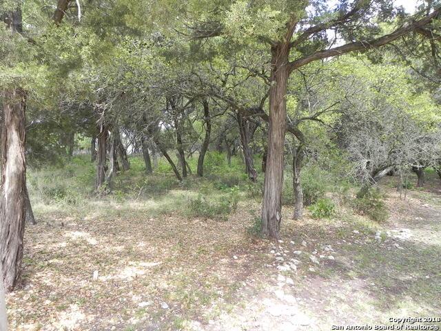 Lot 820 Circle Oak Dr, Bulverde, TX - USA (photo 5)