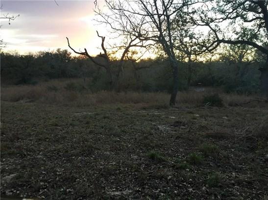 12500 Fm 1117, Seguin, TX - USA (photo 4)