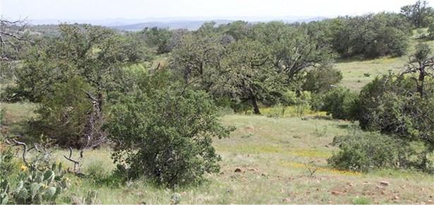 Tract H Grape Creek Rd, Llano, TX - USA (photo 3)