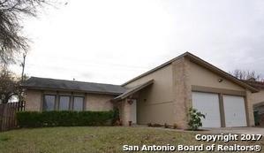 11317 Champion Oak, Live Oak, TX - USA (photo 1)