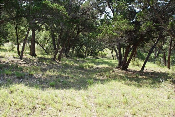 7308 Getaway Dr, Jonestown, TX - USA (photo 4)
