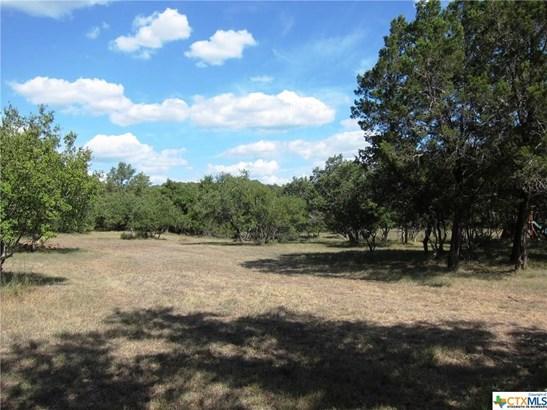 30190 Running Deer Dr, Bulverde, TX - USA (photo 2)