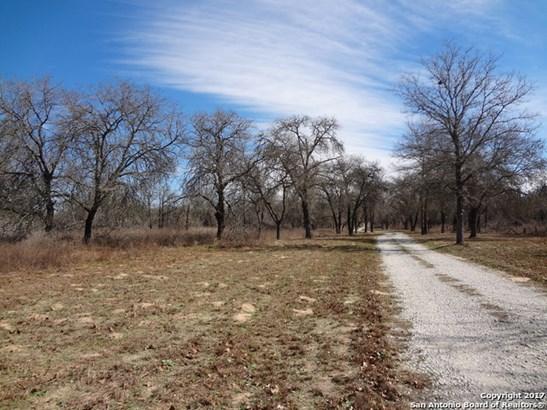 Lot 11 County Road 6723 (bayne Rd, Natalia, TX - USA (photo 3)