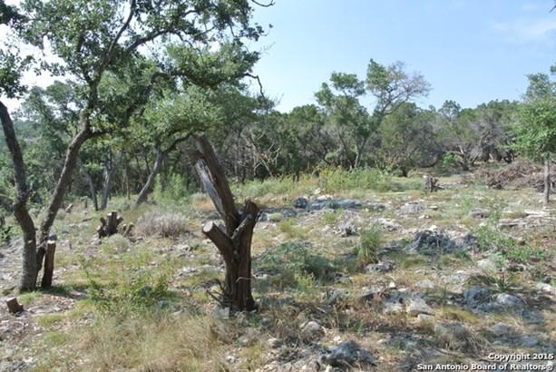 27914 Storm View, Garden Ridge, TX - USA (photo 3)