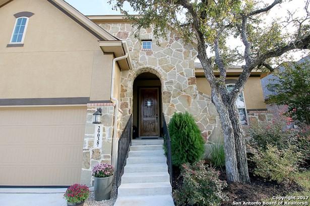 29038 Gooseberry, San Antonio, TX - USA (photo 2)