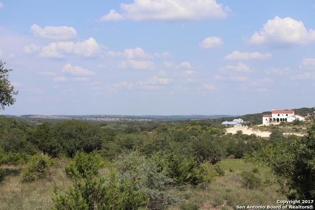 10403 Doherty Spring, San Antonio, TX - USA (photo 2)