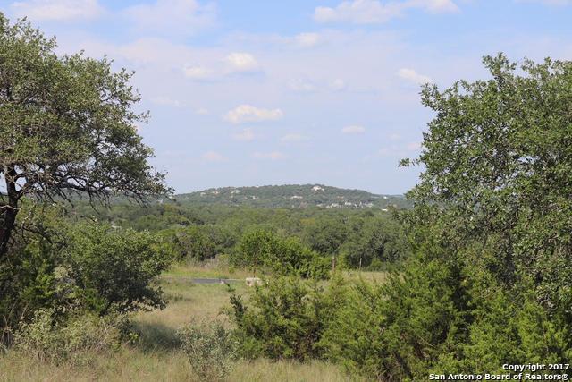 10403 Doherty Spring, San Antonio, TX - USA (photo 3)