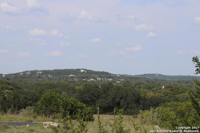 10403 Doherty Spring, San Antonio, TX - USA (photo 5)