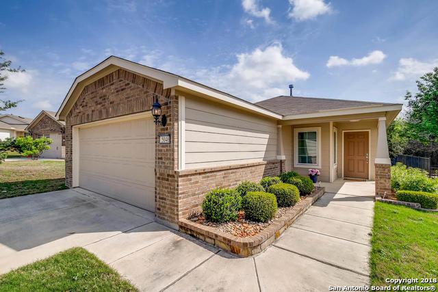 5046 Sandhill Crane, San Antonio, TX - USA (photo 1)