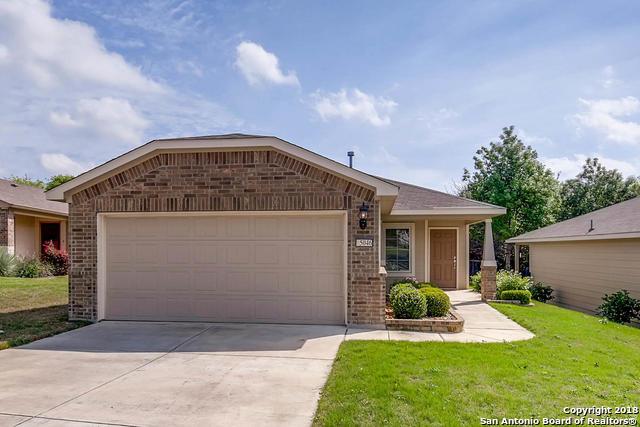 5046 Sandhill Crane, San Antonio, TX - USA (photo 2)