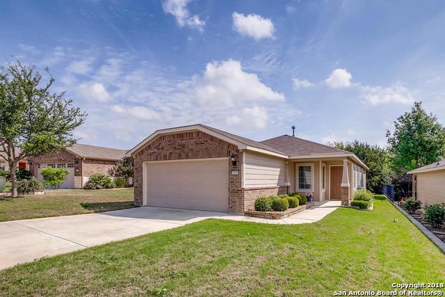 5046 Sandhill Crane, San Antonio, TX - USA (photo 3)