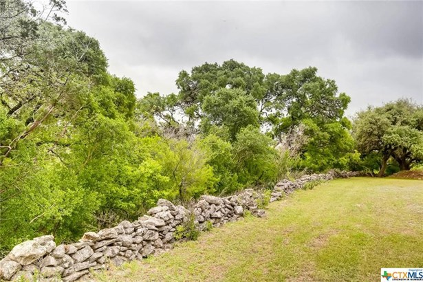 1390 Ervendberg, New Braunfels, TX - USA (photo 4)