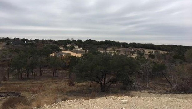 133 Taylor Creek Way, Liberty Hill, TX - USA (photo 1)