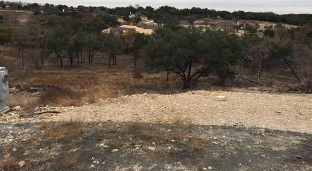 133 Taylor Creek Way, Liberty Hill, TX - USA (photo 2)