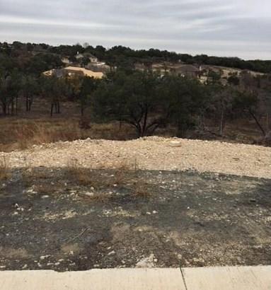 133 Taylor Creek Way, Liberty Hill, TX - USA (photo 4)
