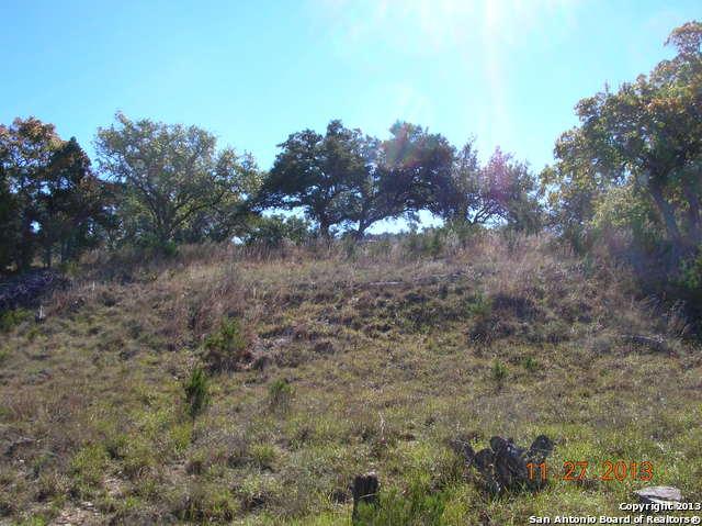 3324 Comal Springs, Canyon Lake, TX - USA (photo 5)