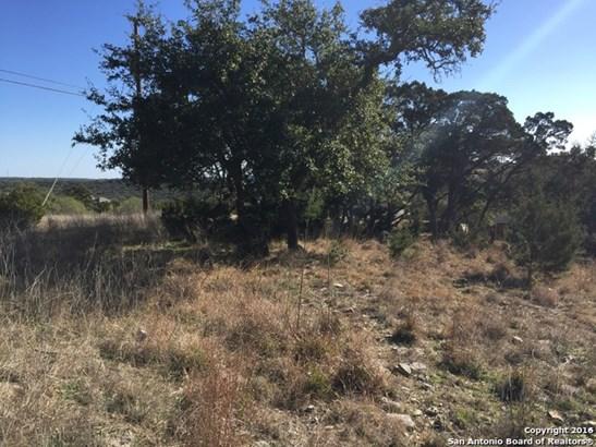 Preakness Pass, Bulverde, TX - USA (photo 5)