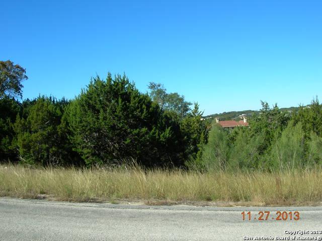 3324 Comal Springs, Canyon Lake, TX - USA (photo 4)