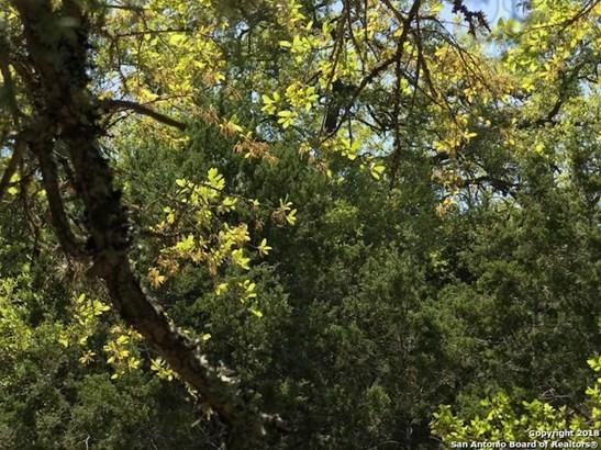 1118 Madrone Rd, Fischer, TX - USA (photo 5)