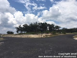 Lot 10 Block 2 Pr 2771 Pr 2773, Mico, TX - USA (photo 2)