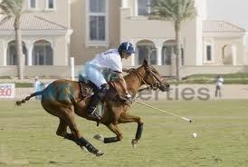 Arabian Ranches, Dubai - ARE (photo 3)