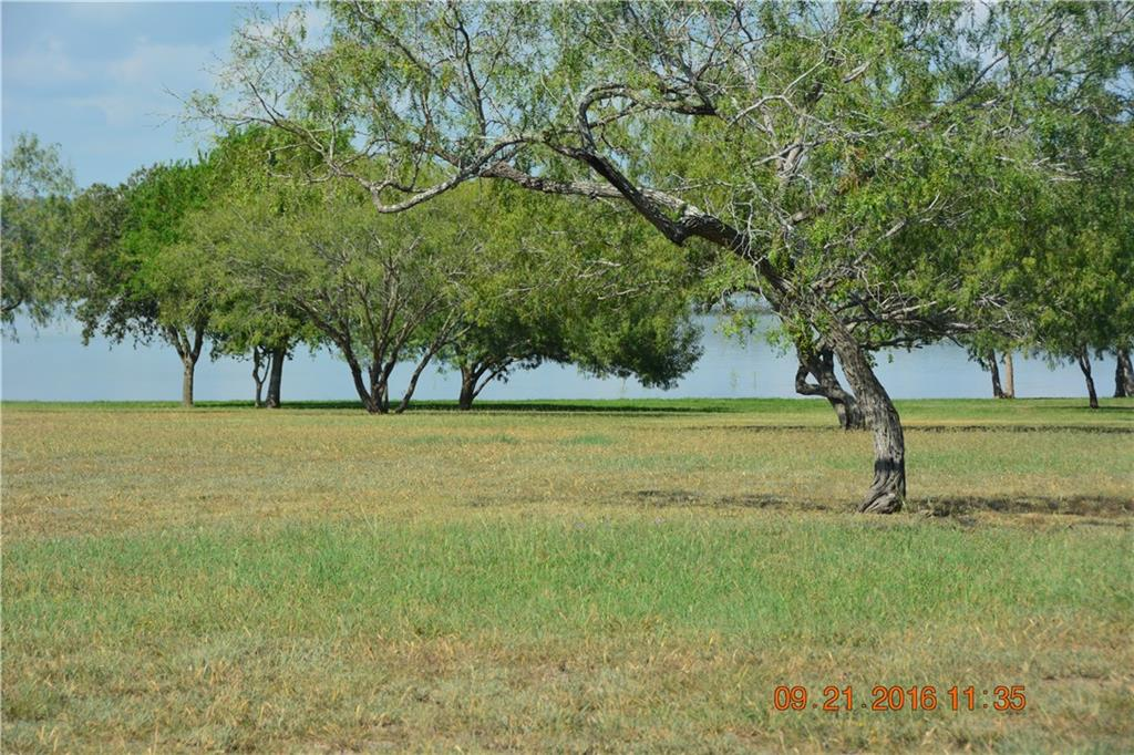 Cross Property - Sandia, TX (photo 4)