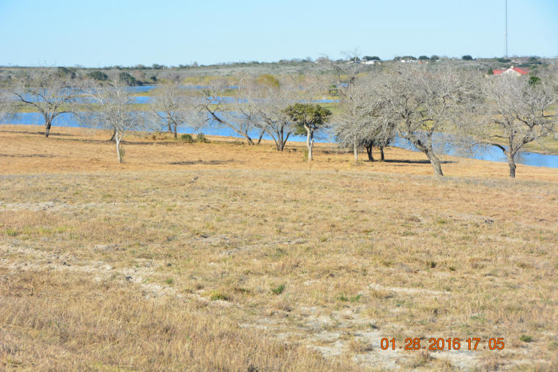 Cross Property - Sandia, TX (photo 5)